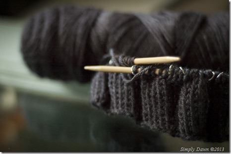 Knitting2013-4065